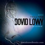 Dovid Lowy - You are with Me (CD)
