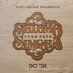 Shlomo Simcha - Ani Kan (CD)